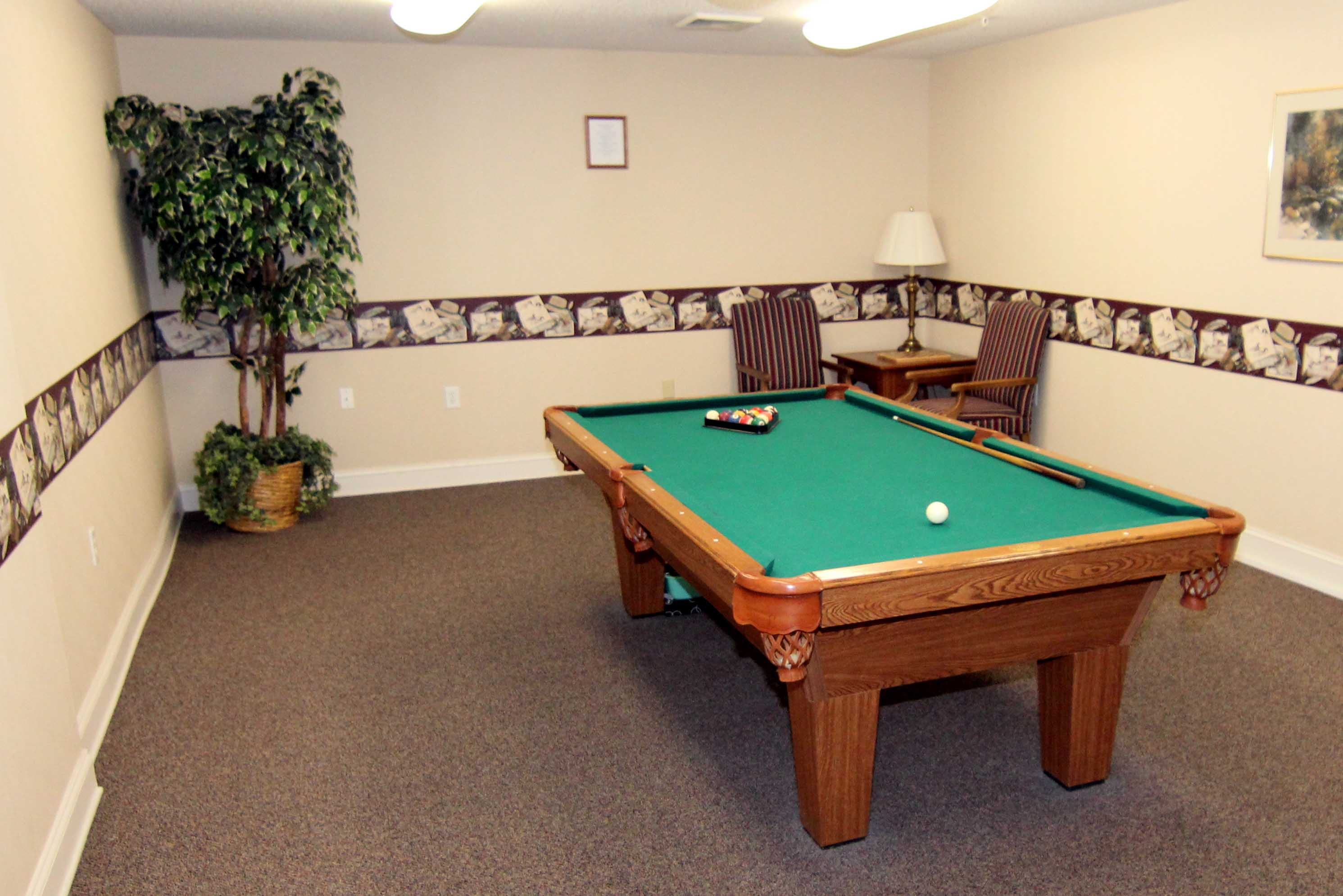 Glen Forest Pool Table